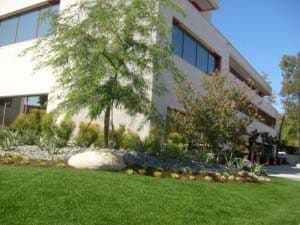 synthetic grass for commercial and retail buildings