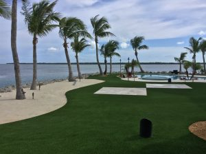 Artificial grass backyard next to ocean with palm trees