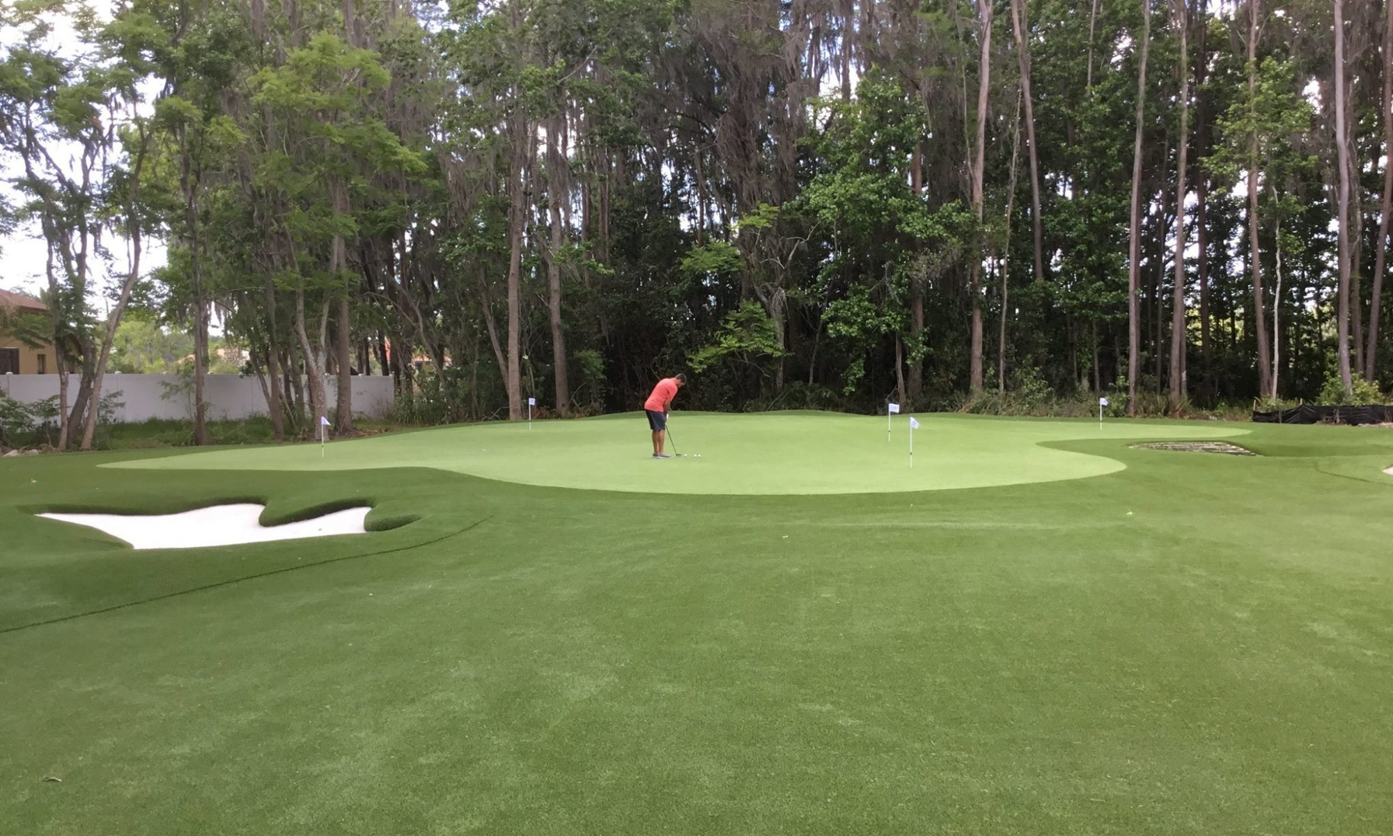view of artificial grass golf green with putting