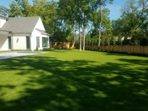 beautiful artificial grass lawns